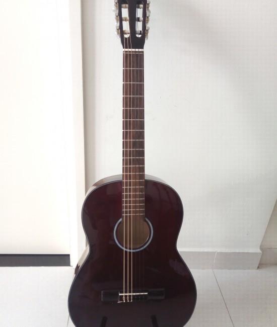 Classic guitar DVE70C nâu