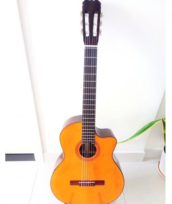 Classic guitar Việt Nam DC100J vàng yamaha