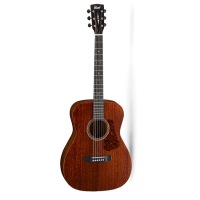 Acoustic Guitar Cort L450C