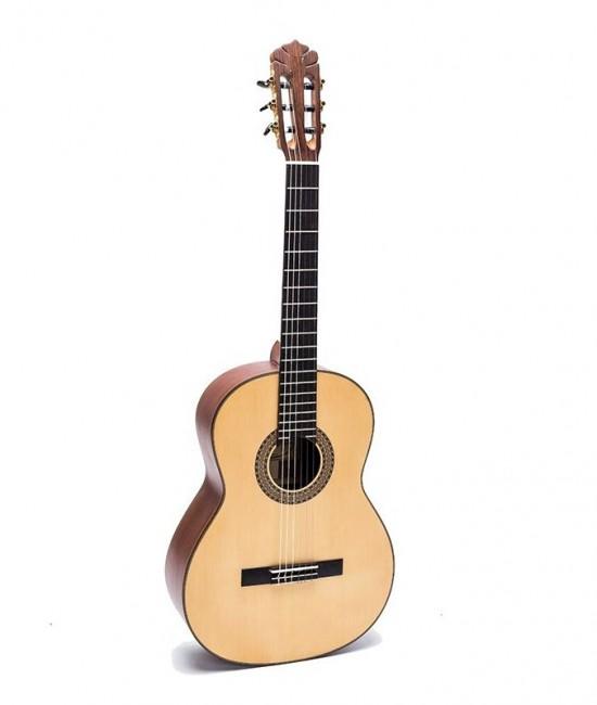 Guitar Classic DC350
