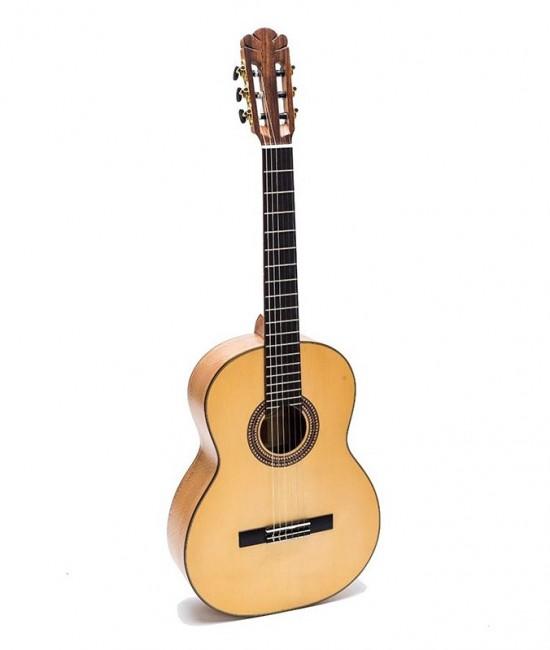 Guitar Classic DC550C