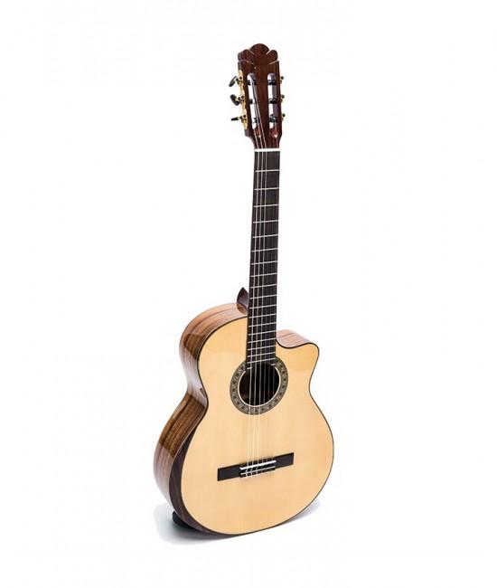 Guitar Classic DC600J