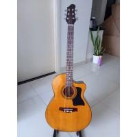 Acoustic guitar DJ120 vàng