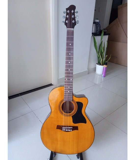 Acoustic guitar DJ120 vàng