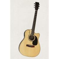 Đàn Guitar Acoustic DJ260 EQ MET B12