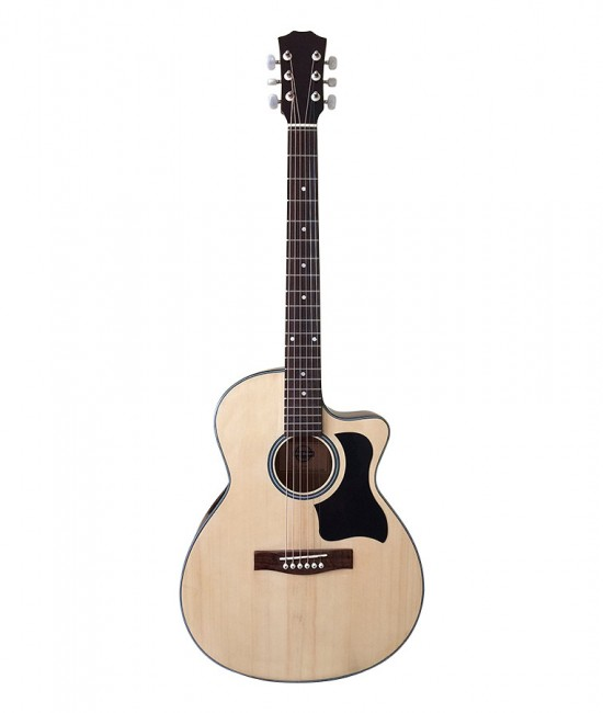Acoustic Guitar DT70