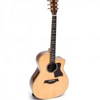 Guitar Acoustic DT700