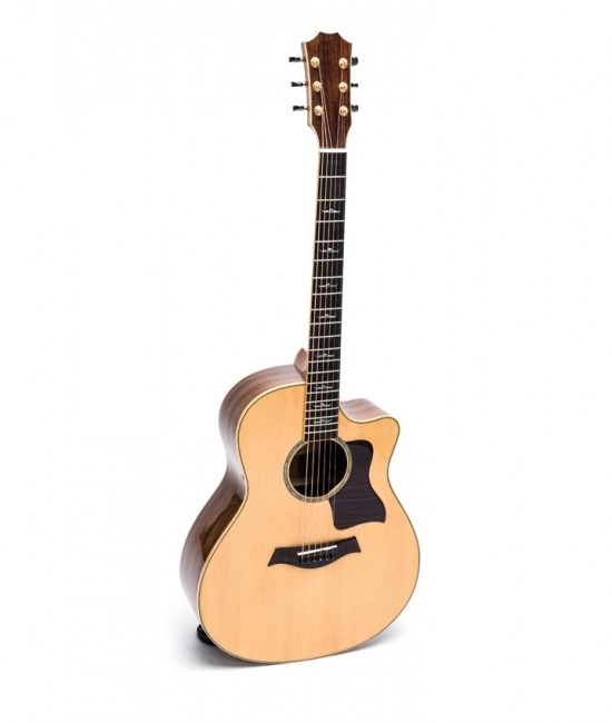 Guitar Acoustic DT700