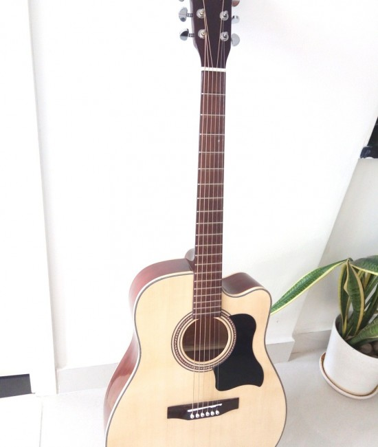 Acoustic Guitar DJ200