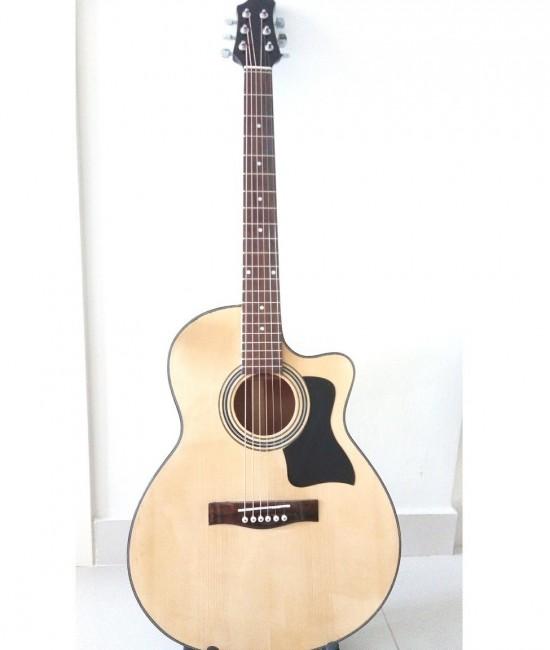 Acoustic guitar Việt Nam DJ120