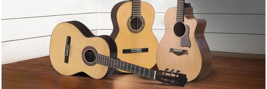 Guitar Chuyên Nghiệp