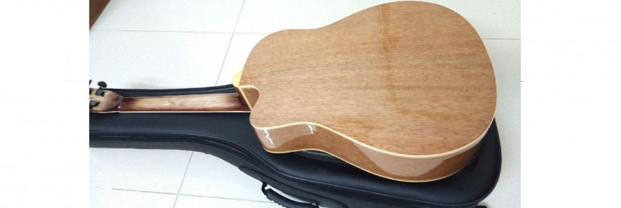 Guitar Việt Nam